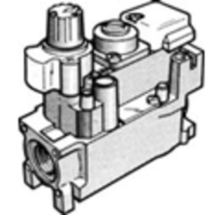 HON V4600C1086 VAN.GAZ 220V1/2